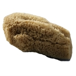 Beaming Baby Org Baby Sea Sponge Natural 1large